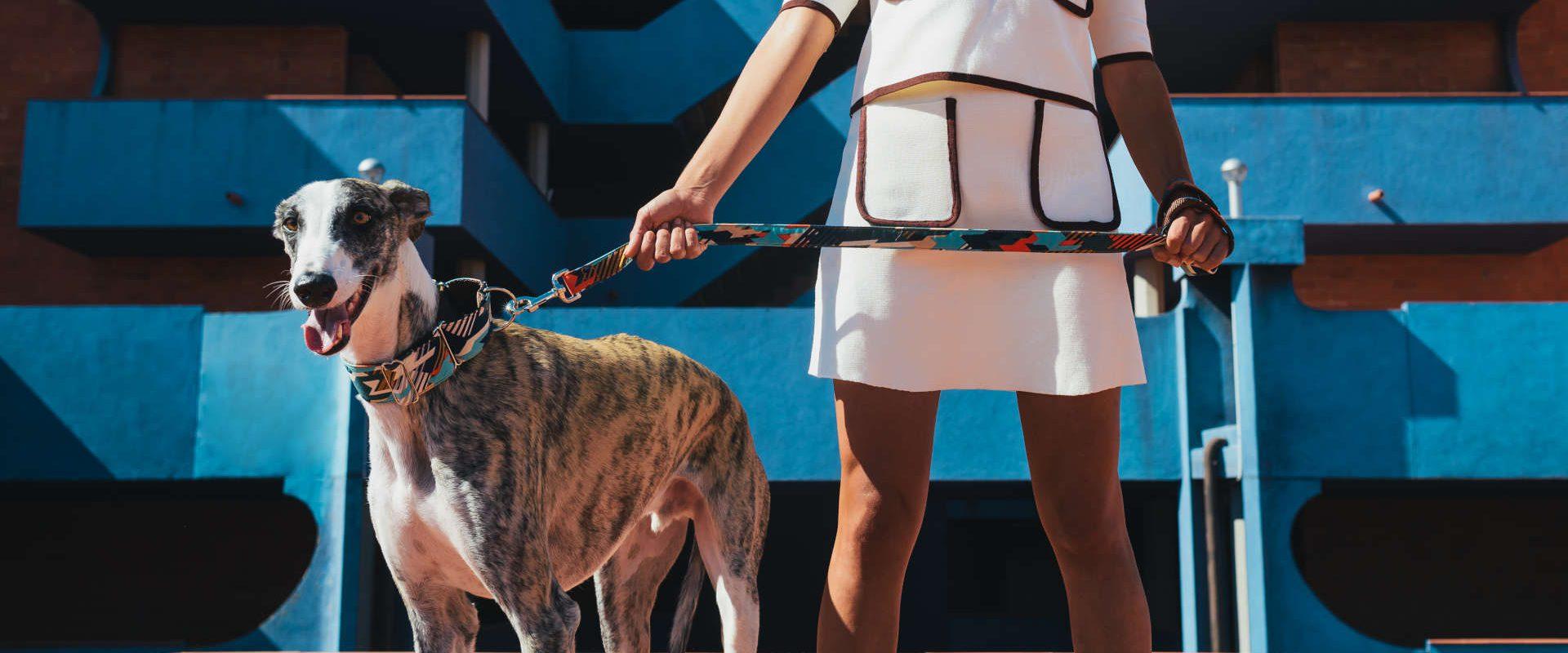 Halsband & Leine Textura Torms | Brott Barcelona