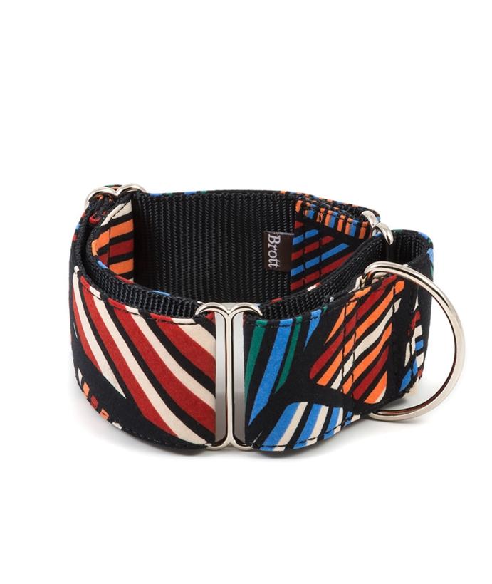Brott-dog-Halsband-Textura-Benavent-Greyhound