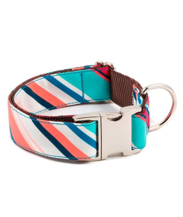 Brott-dog-Halsband-Textura-Morisca-Large