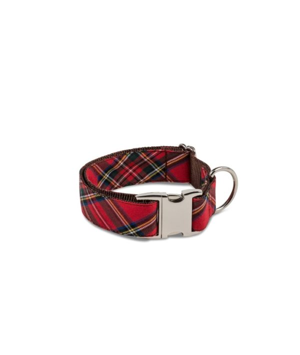 Brott Dog Halsband Textura Tremp Large