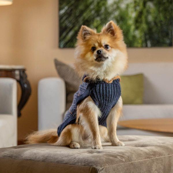 Alqo-Wasi-Pullover-Preppy-Blue-mit-Pomeranian-Spitz