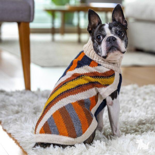 Alqo-Wasi-Pullover-Zipper-mit-franzoesische-bulldogge