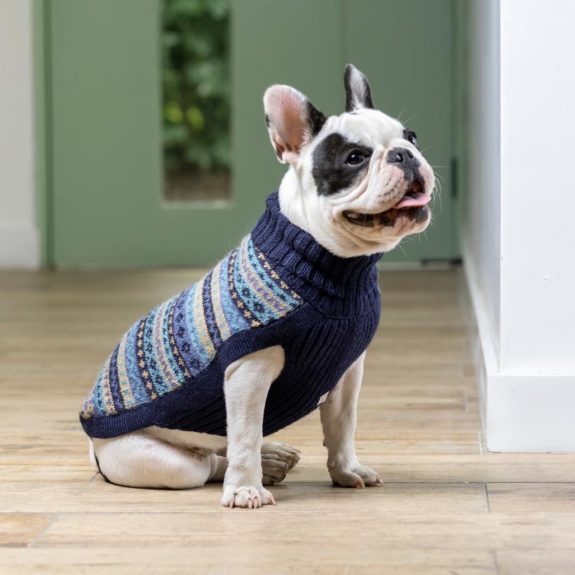 Alqo-Wasi-Pullover-apres-ski-mit-franzoesische-bulldogge