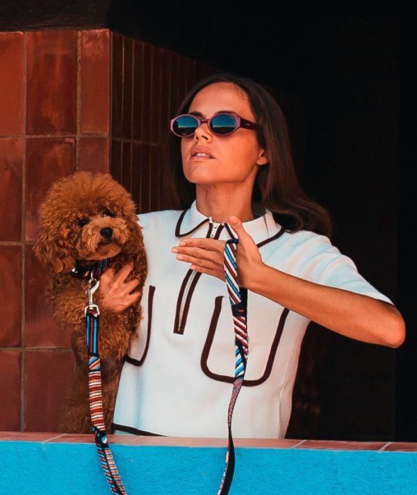 Brott-Dog-Halsband-Leine-Textura-Benavent-mit-Pudel