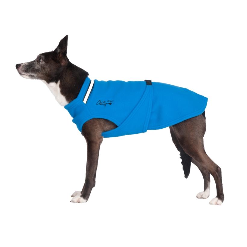 Chilly-Dogs-Chilly-Sweater-Blau-Seitenansicht-auf-Hund