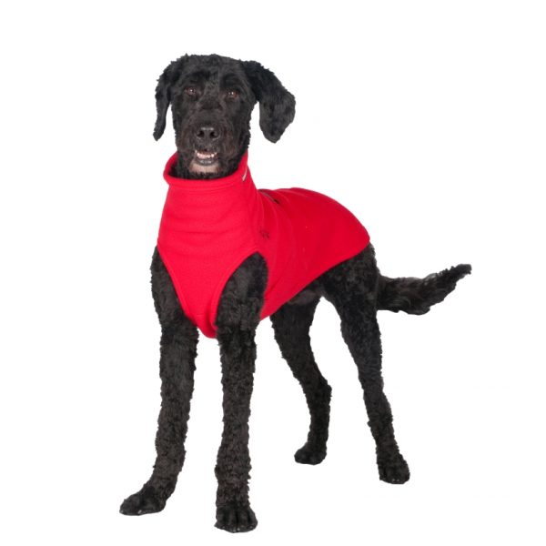 Chilly-Dogs-Chilly-Sweater-Rot-Frontansicht-auf-Pudel