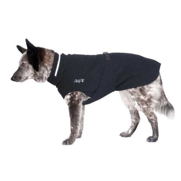 Chilly-Dogs-Chilly-Sweater-Schwarz-Seitenansicht-auf-Hund