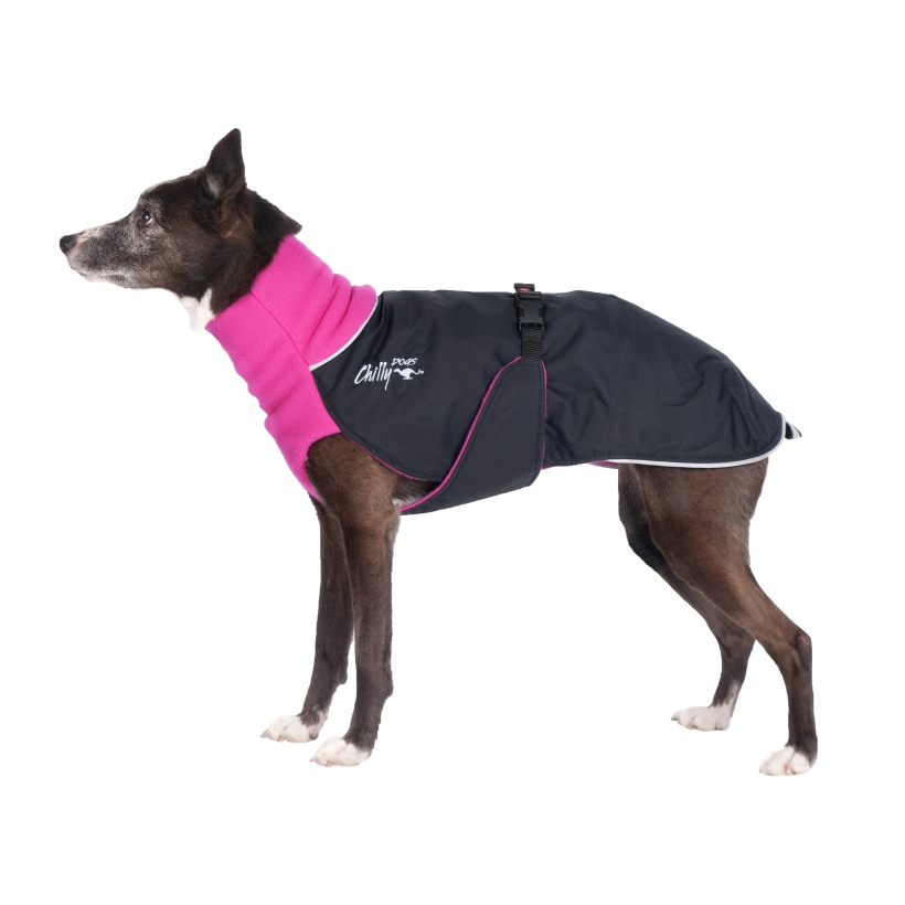 Chilly-Dogs-Great-White-North-Mantel-Pink-Schwarz-Hund-Seitenansicht