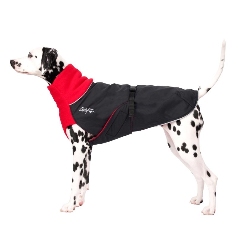 Chilly-Dogs-Great-White-North-Mantel-Rot-Schwarz-Dalmatiner-Seitenansicht