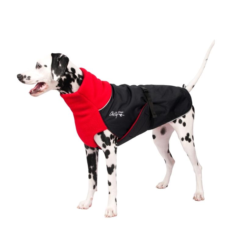Chilly-Dogs-Great-White-North-Mantel-Rot-Schwarz-Dalmatiner-Seitenansicht2