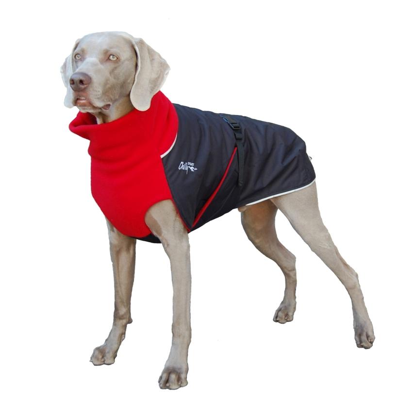 Chilly-Dogs-Great-White-North-Mantel-Rot-Schwarz-Weimaraner-Frontansicht