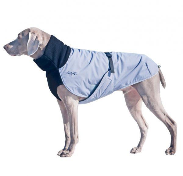 Chilly-Dogs-Great-White-North-Mantel-Schwarz-Grau-Weimaraner-Seitenansicht