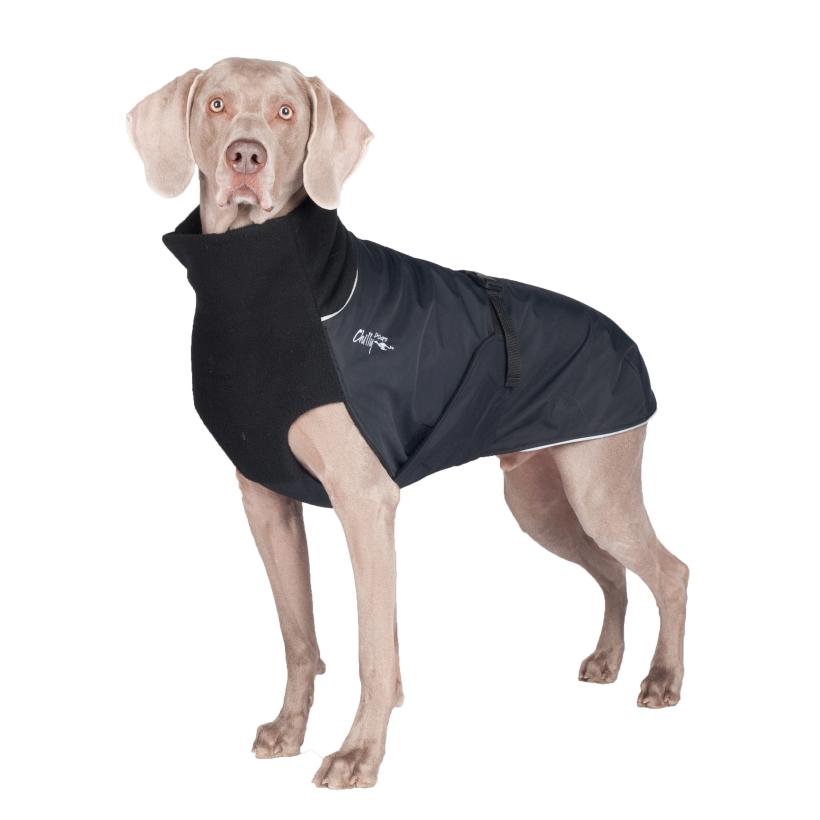 Chilly-Dogs-Great-White-North-Mantel-Schwarz-Schwarz-Weimaraner-Frontansicht