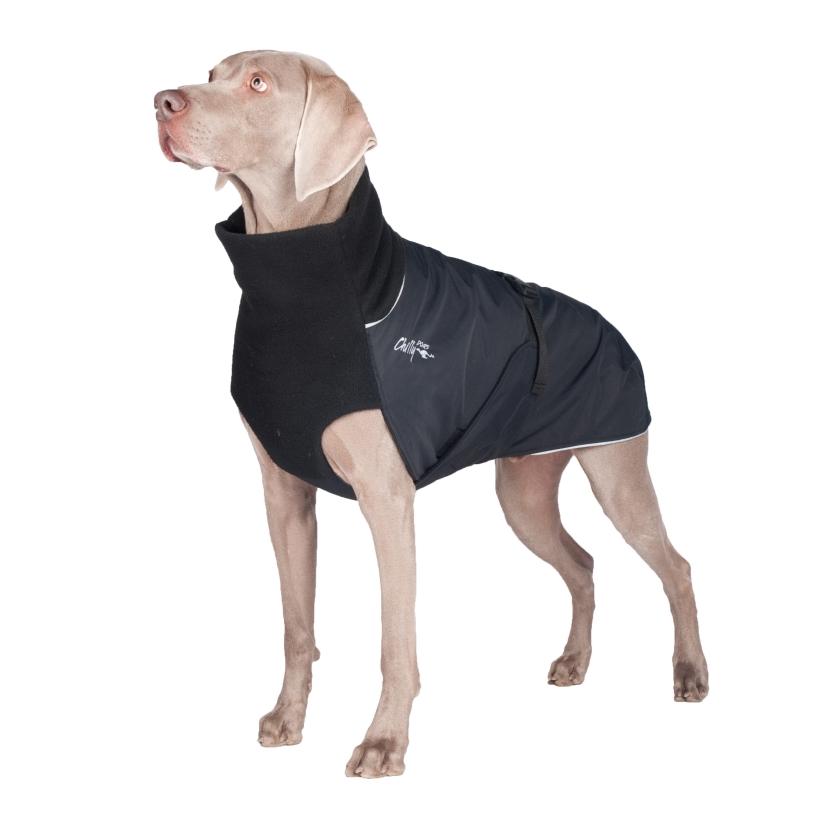 Chilly-Dogs-Great-White-North-Mantel-Schwarz-Schwarz-Weimaraner-Frontansicht2