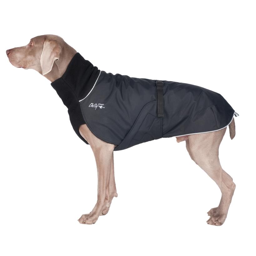 Chilly-Dogs-Great-White-North-Mantel-Schwarz-Schwarz-Weimaraner-Seitenansicht