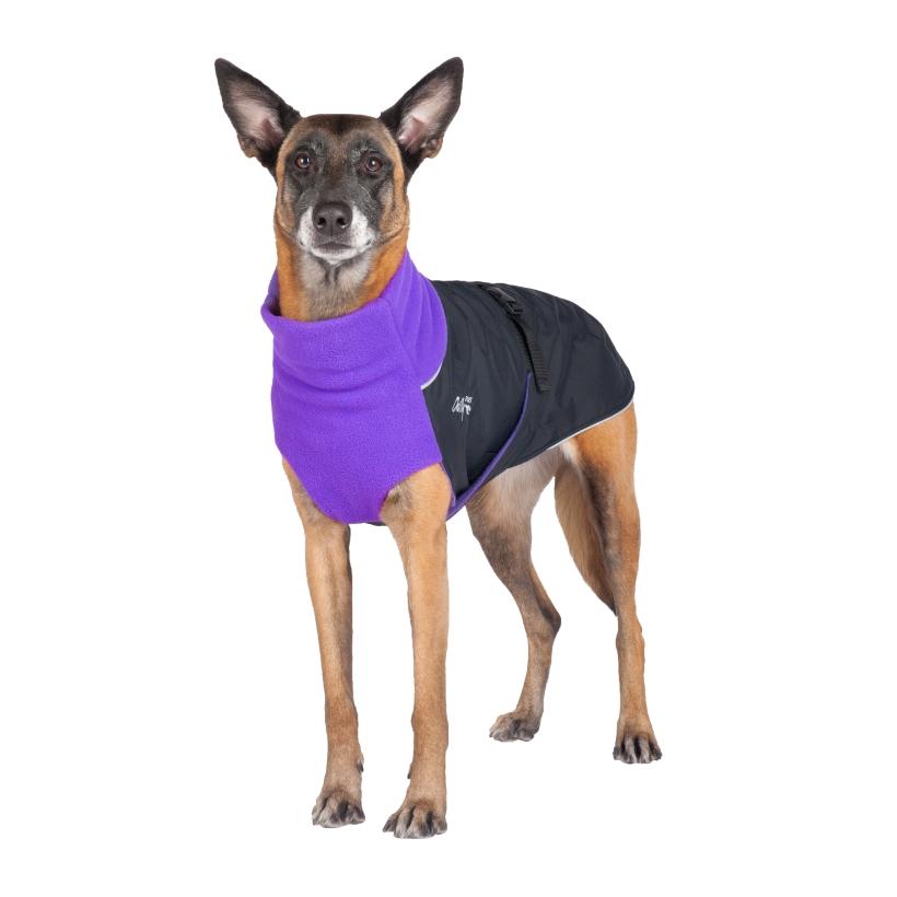 Chilly-Dogs-Great-White-North-Mantel-Violett-Schwarz-Hund-Frontansicht