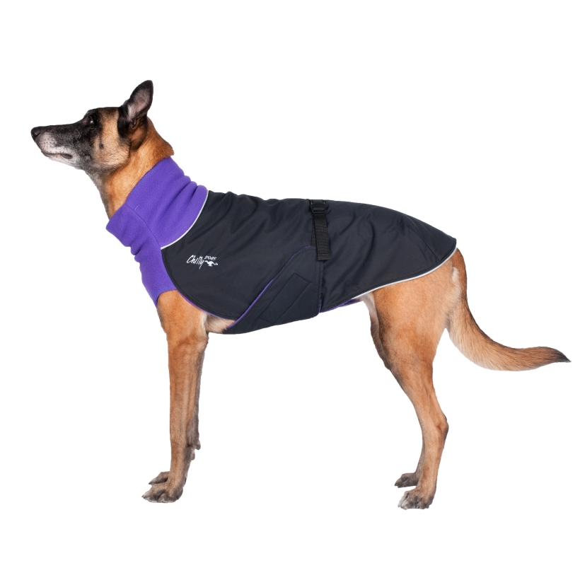 Chilly-Dogs-Great-White-North-Mantel-Violett-Schwarz-Hund-Seitenansicht