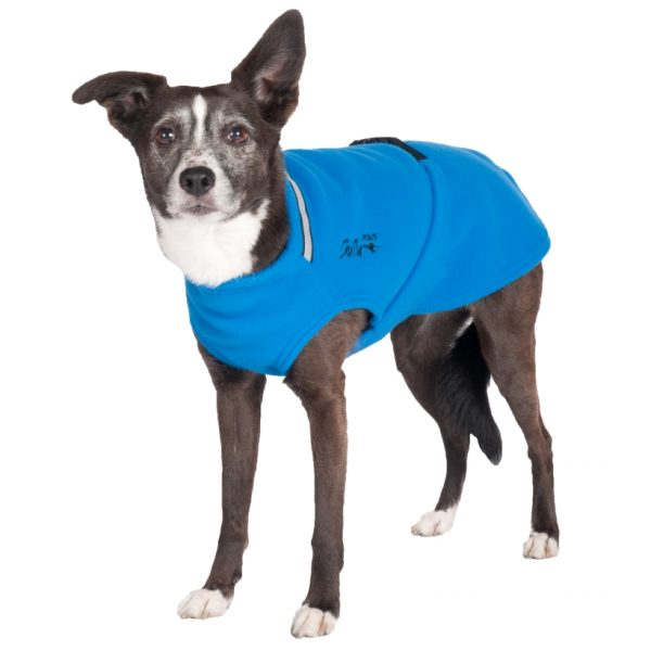 Chilly-Dogs-Chilly-Sweater-Blau-Frontansicht-auf-Hund