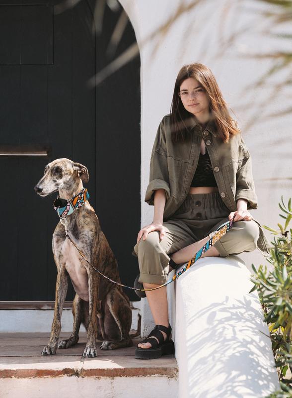 Brott-Dog-Barcelona-Textura-Guell-Leine-Halsband-Galgo