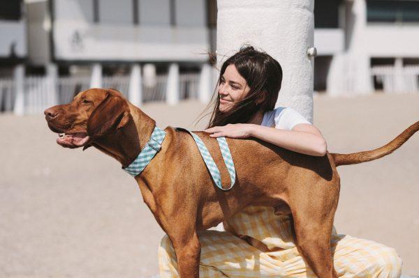 Brott-Dog-Barcelona-Textura-Pedrosa-Leine-Halsband-Viszla