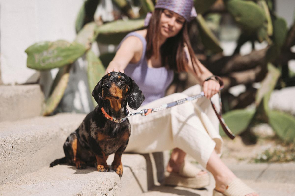 Brott-Dog-Barcelona-Textura-Siurana-Leine-Halsband-Dackel