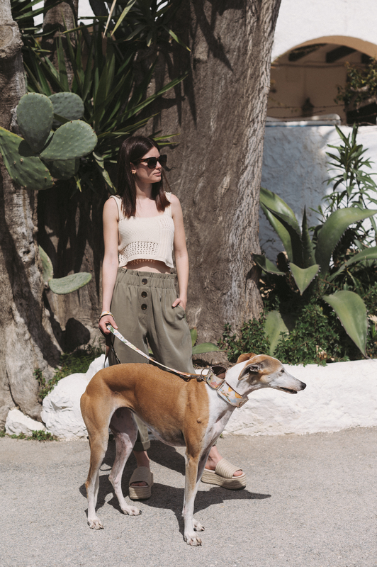 Brott-Dog-Barcelona-Textura-Vilanova-Leine-Halsband-Galgo